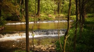 Susiec, rzeka Tanew 2012, fot. DK_14