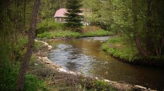 Susiec, rzeka Tanew 2012, fot. DK_19