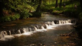 Susiec, rzeka Tanew 2012, fot. DK_12