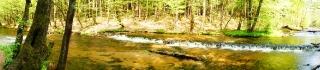 Susiec, rzeka Tanew 2012, fot. DK_6